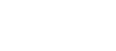Plum's Finn & Co