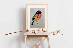 Colourful Bird paintings