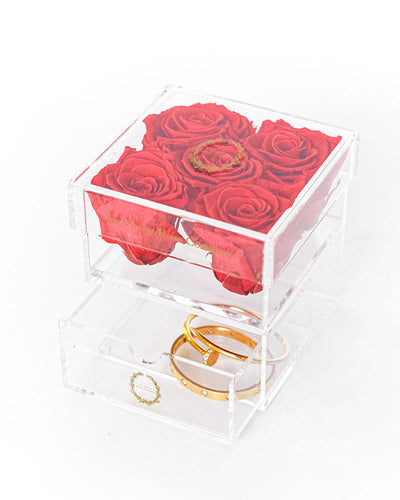 5 Premium Ecuadorian Eternity Roses in a Custom Box - Le Petite