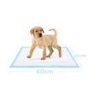 Petter Dog Training Pads - Large (60x60cm) 40 Pads - Animall Philippines