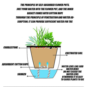 Rompsun™ Automatic water-absorbing flower pot for lazy people