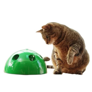 Rompsun™ Peek-A-Boo Cat Toy