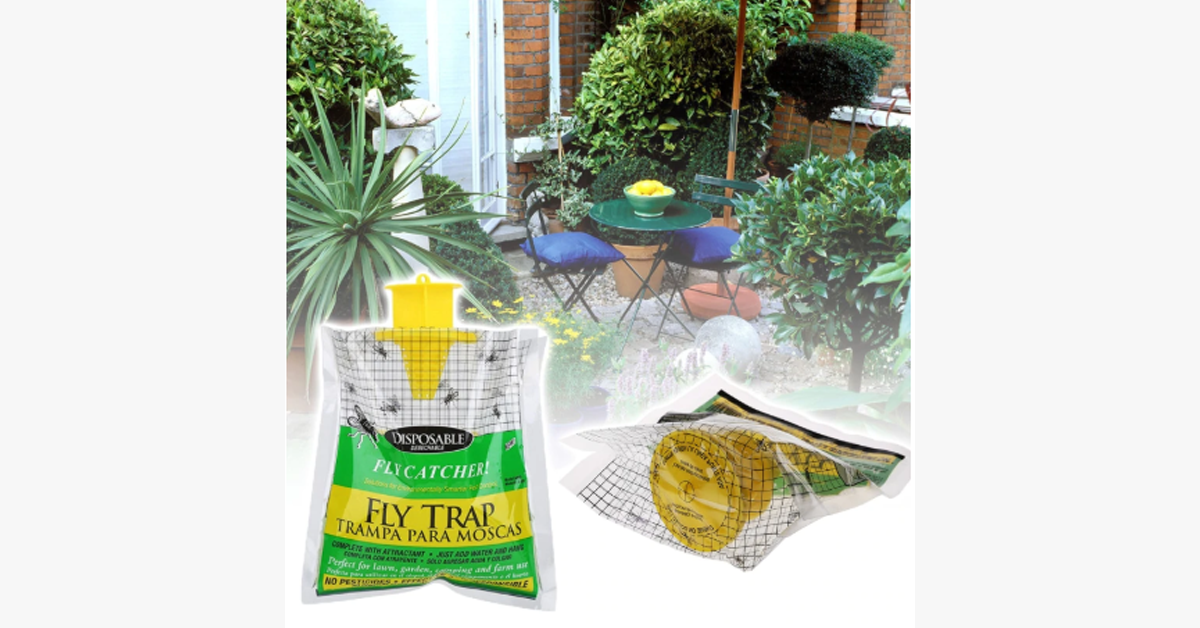 Flies Trap – Keep The Insects Away!