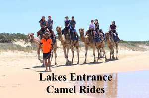 [Budget Friendly] Beach Camel Ride $50.00