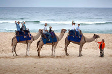 Load image into Gallery viewer, [Budget Friendly] Beach Camel Ride $50.00