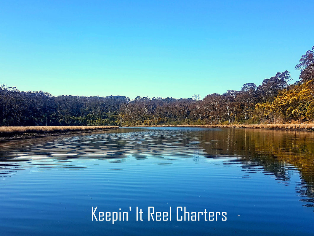 Sightseeing Charters - Lakes Entrance or Lake Tyers