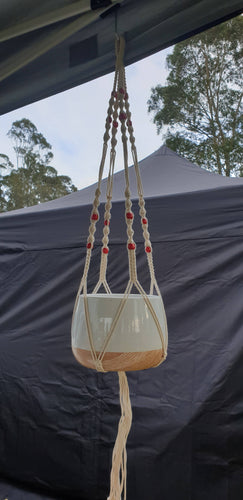 Macrame hangers and pot