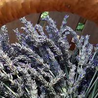 Load image into Gallery viewer, Facial Cleansing Grains ~ Sensitive Skin | Organic Homegrown Botanicals ~ Calendula ~ Chamomile ~ Lavender