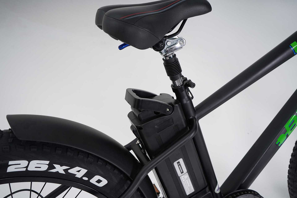 Wild Electric Bicycle - Black