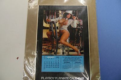 Playboy 1982 Playmate Desk Calendar 062816lm-ep - New
