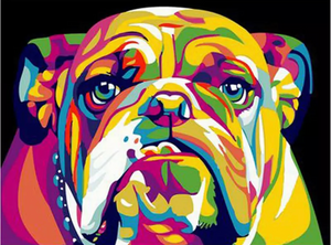 Colorful dog 1 - Painting by number set 40x50cm including frame - painting by gene
