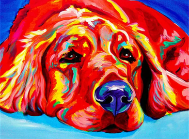 Colorful dog 3 - Painting by number set 40x50cm including frame - painting by gene