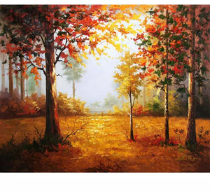 Forest autumn landscape - Painting by number set 40x50cm including frame - painting by gene