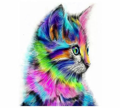 Colorful cat - Painting by number set 40x50cm including frame - painting by gene