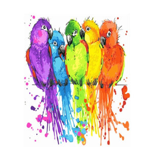 5 Colorful Birds-Painting by number set 40x50cm including list-painting by gene