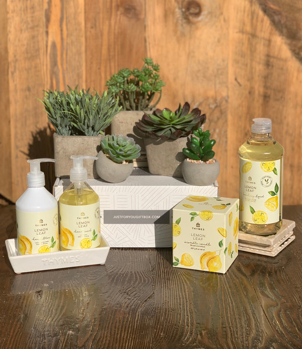 Succulents Lemon Gift Box