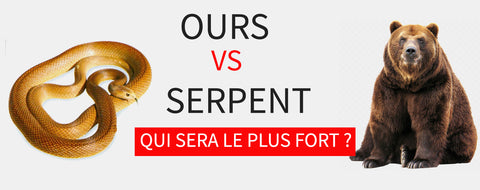 Ours vs Serpent