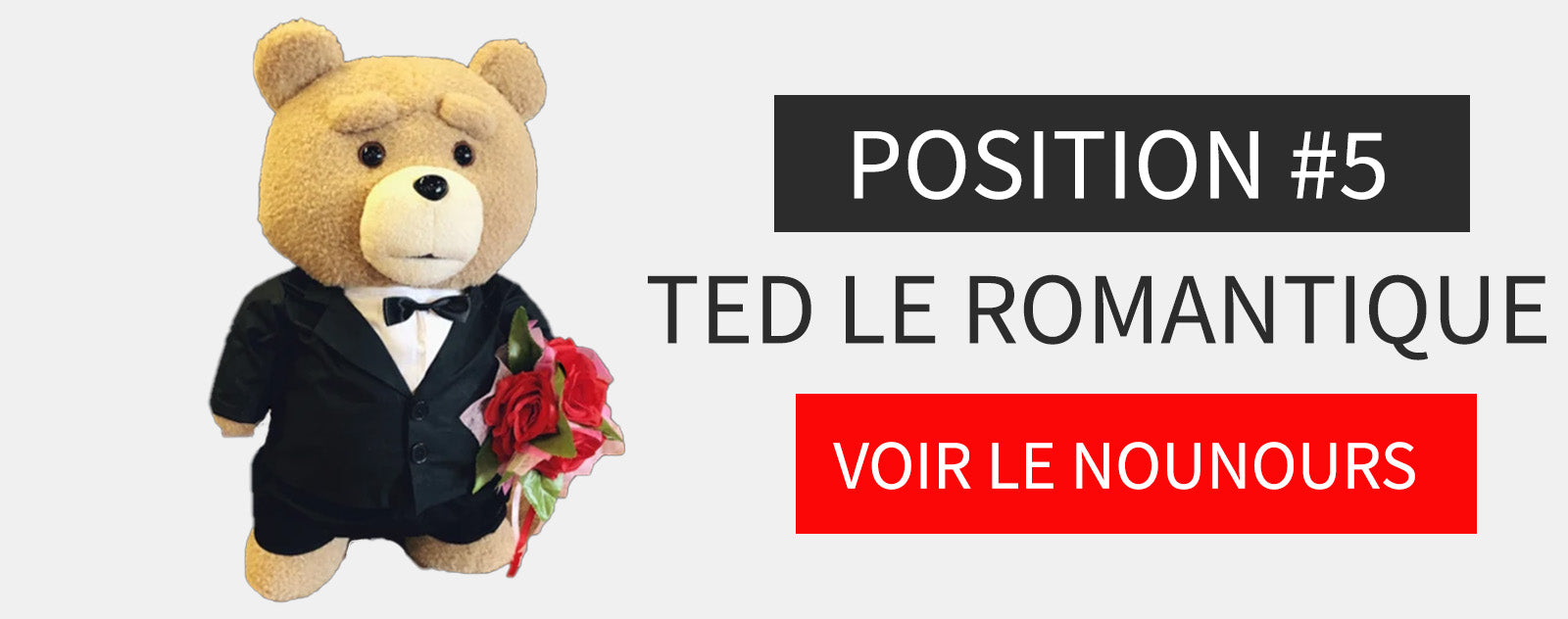 Peluche Ours Ted