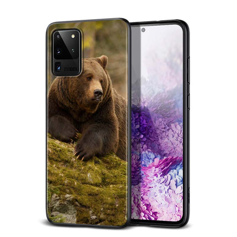 Coque Samsung S20 Plus Ours