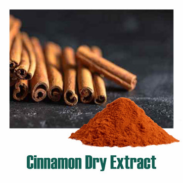 Cinnamon (Dalchini) dry Extract - 10% Polyphenols by UV
