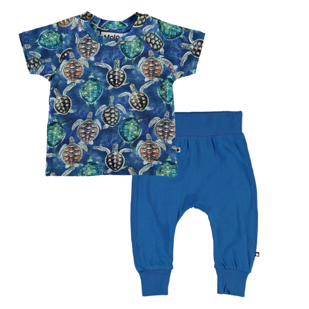 Molo Baby Boy Emmet Tee & Sammy Pant 2pc Set ~ Mini Turtles