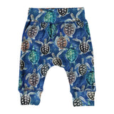 Molo Baby Boy Sammy Pant ~ Mini Turtles