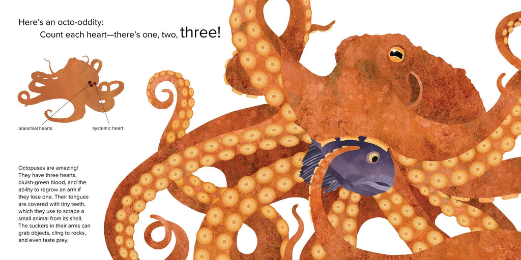Simon & Schuster Octopuses One to Ten