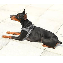Load image into Gallery viewer, PETKIT Air Fly Dog Harness