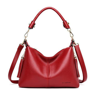 High Quality Soft Leather Small Hobo Handbags Women Crossbody Bags Shoulder Bag v15 - EUFASHIONBAGS