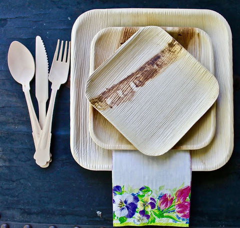 Palm Leaf plates for outdoor dining