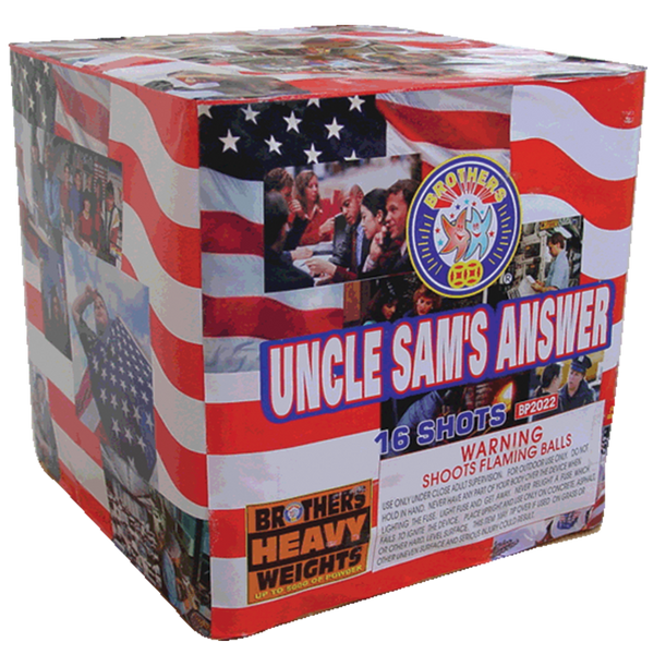 Uncle Sam's Answer Case