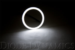 Halo Lights LED 100mm White Pair Diode Dynamics