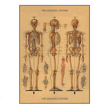 Load image into Gallery viewer, Vintage Skeleton Poster