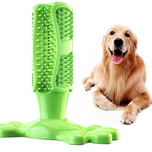 Toy toothbrush for dog
