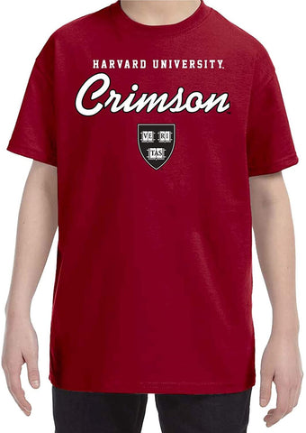 J2 Sport Harvard University Crimson NCAA Youth Apparel