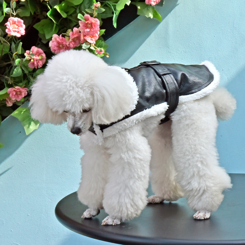 Soft Leather Dog Jacket Coat