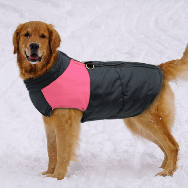 Super Warm Waterproof Dog Coat Large Sizes