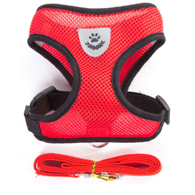 Breathable Small Dog Pet Harness and Leash Set