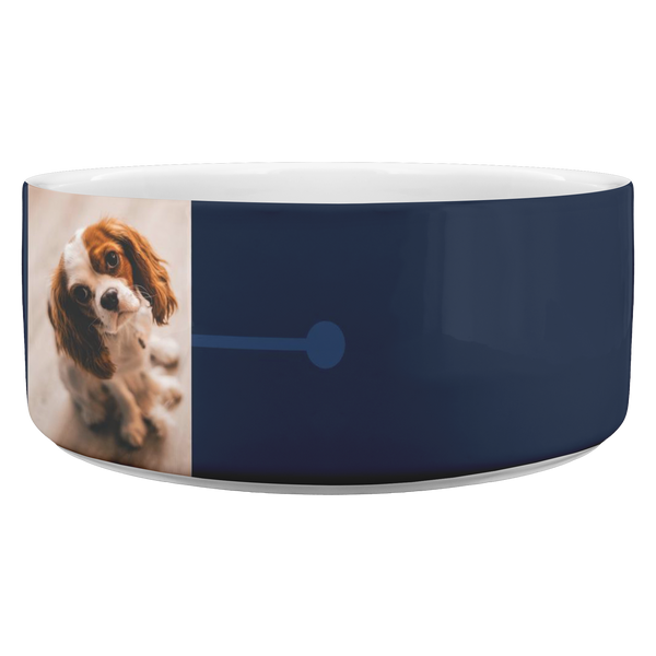Customized Dog Bowl