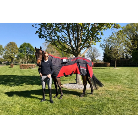 Paul Kennedy Cartown Sporthorses with Activo-Med