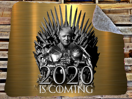 2020 is coming blanket