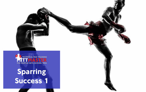 Sparring Success System Level 2 (Video & 2 Manuals)