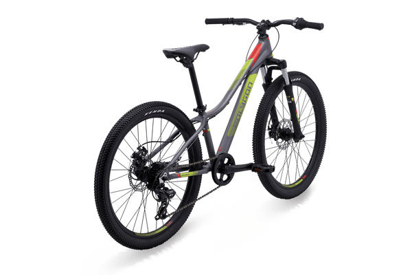 Polygon Junior, Kids and Small Riders Bike | Relic24 - 2019 - Cycling Boutique