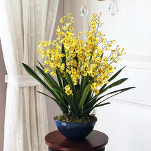 將圖片載入圖庫檢視器 Vicky Yao Faux Floral - Exclusive Design Artificial Yellow Dancing Orchid Arrangement