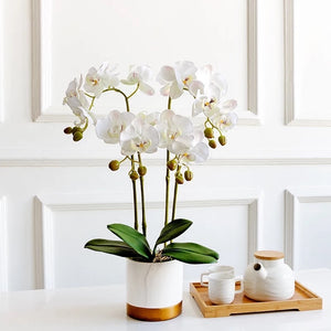 Vicky Yao Faux Floral - Exclusive Design Artificial  4 Stem Phalaenopsis Orchid Flowers Arrangement
