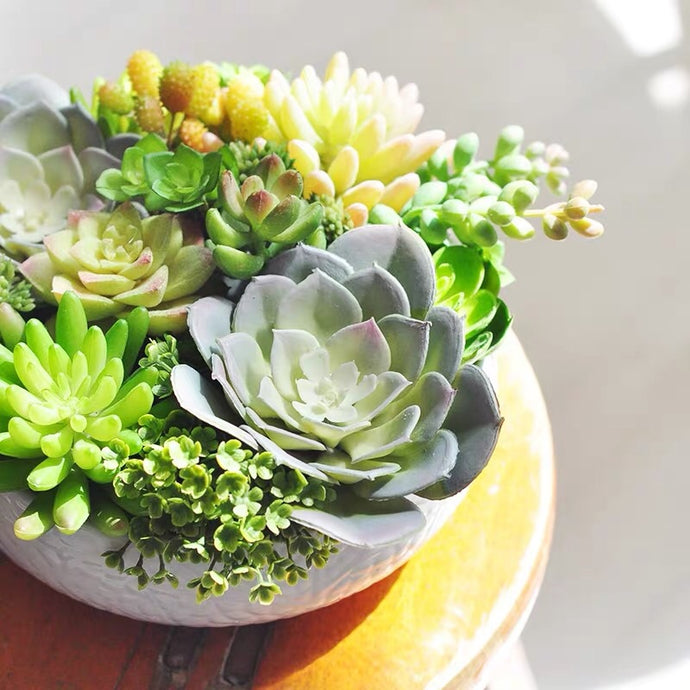 Vicky Yao Faux Floral - Real Touch colorful Succulents Arrangement - Vicky Yao Home Decor SEO