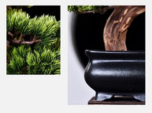 Load image into Gallery viewer, Vicky Yao Faux Plant - Exclusive Design Artificial Bonsai In Black Pot