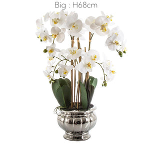 Vicky Yao Faux Floral - Artificial Phalaenopsis Orchid Arrangement In Silver Pot