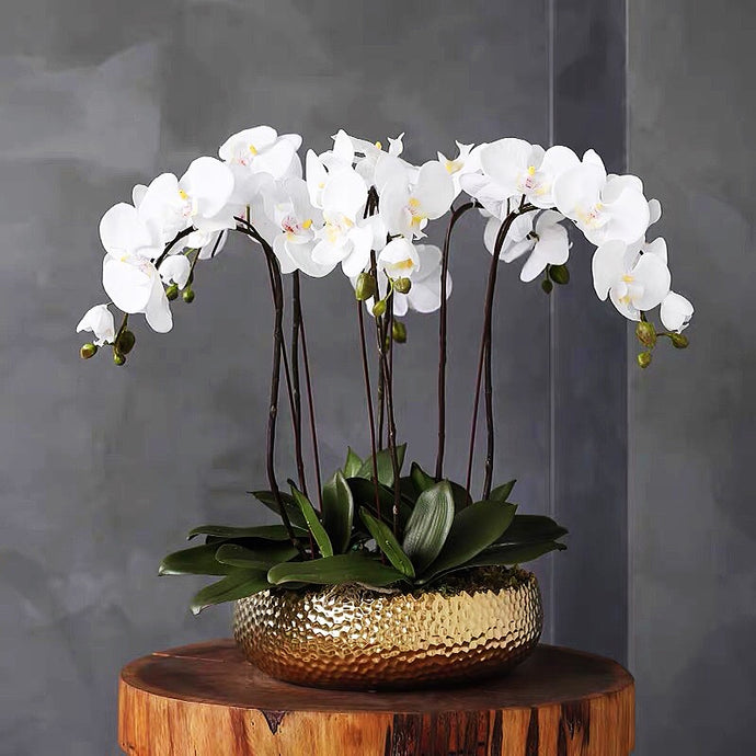 Vicky Yao Faux Floral -Handmade Exclusive Design Vicky Yao-Real Touch Artificial Flower Orchid Pot 6Stems