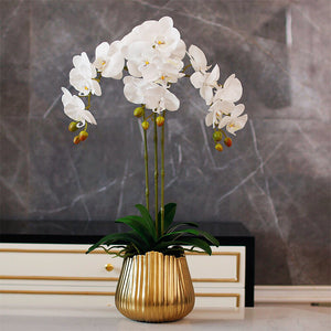 Vicky Yao Faux Floral - Real Touch Exclusive Design Flower art of Phalaenopsis Orchid Golden Pot